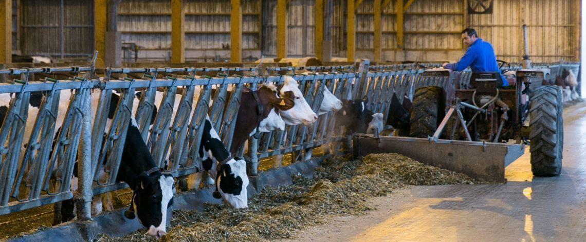 ACCOMPAGNER nos producteurs de lait