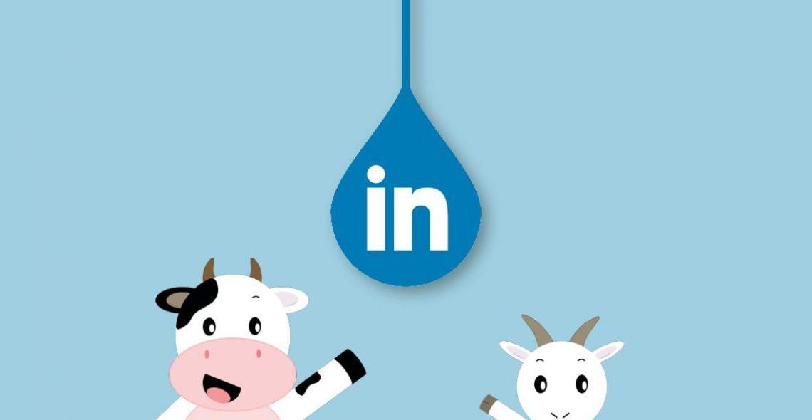 Terra Lacta arrive sur LinkedIn !